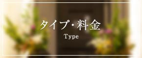 3 3 type